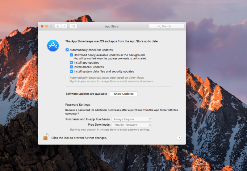 A screenshot of Apple macOS auto-update