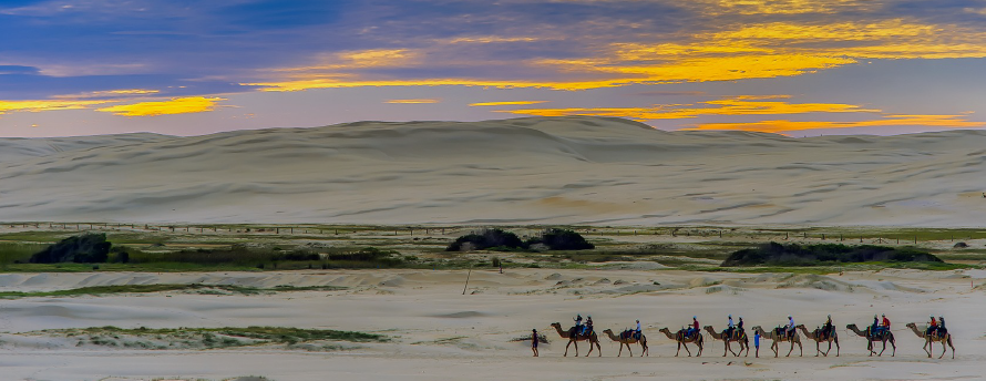 The Egyptian Sahara